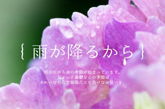 6月のプチ企画展&オダサガ文化祭!